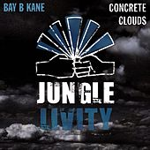 Play & Download Concrete Clouds - Single by Bay B Kane | Napster