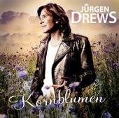 Kornblumen von Jürgen Drews