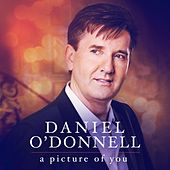 Play & Download Picture Of You by Daniel O'Donnell | Napster