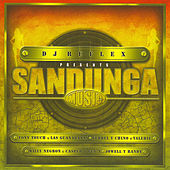 Play & Download DJ Reflex Presents Sandunga Music by Various Artists | Napster