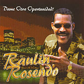 Play & Download Dame Otra Oportunidad by Raulin Rosendo | Napster