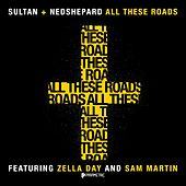 All These Roads by Sultan & Ned Shepard