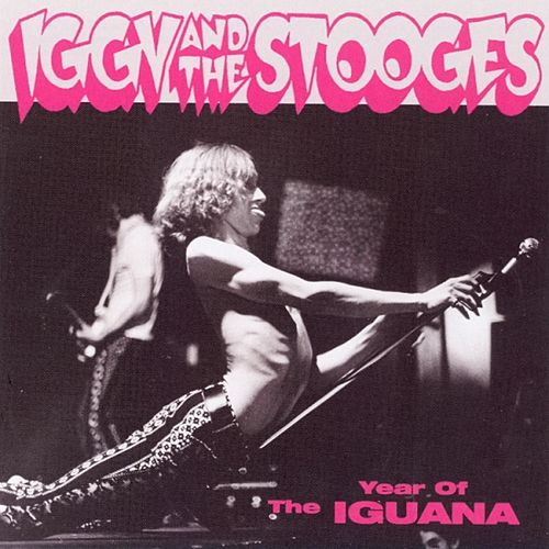 Year of the Iguana by The Stooges