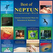 Play & Download Best of Neptun (Fantastic Instrumental Music for Relaxation & Meditation) by Various Artists | Napster