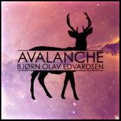 Avalanche by Bjørn Olav Edvardsen