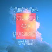 Play & Download Sounds of Summer Vol. 1 by Cicada   Napster