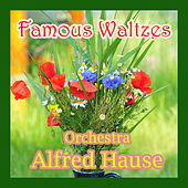 Play & Download Famous Waltzes by Alfred Hause | Napster