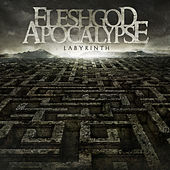 Play & Download Labyrinth by Fleshgod Apocalypse | Napster