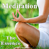Meditation - The Essence (Practice of Spiritual, Philosophical, Mental and Physical Training for Body, Mind & Soul) by Various Artists