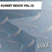 Play & Download Sunset Beach, Vol. 12 by Various Artists | Napster