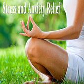 Stress and Anxiety Relief (Spiritual Music for Yoga, Mantra, Karma, Tantra, Zen, Mindfullness, Massage & Meditation) by Various Artists
