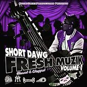 Play & Download Fresh Muzik, Vol. 1 (Slowed & Chopped) by Short Dawg | Napster