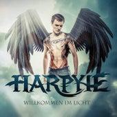 Willkommen im Licht von Harpyie