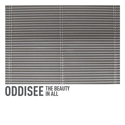 The Beauty in All by Oddisee