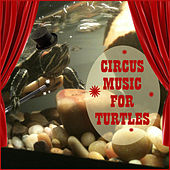 Play & Download Circus Music for Turtles by Sounds Of The Circus South Shore Concert Band | Napster