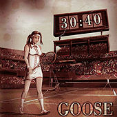 30:40 by Goose