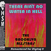Ain't No Water in Hell by The Brooklyn All-Stars