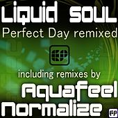 Perfect Day Remixed by Liquid Soul (1)