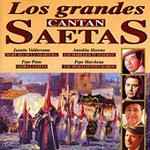 Play & Download Los Grandes Cantan Saetas by Various Artists | Napster