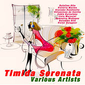 Play & Download Timida Serenata by Various Artists | Napster