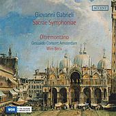 Play & Download Gabrieli: Sacrae Sympnoniae by Various Artists | Napster