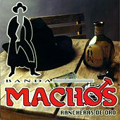 Play & Download Rancheras De Oro by Banda Machos | Napster