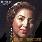 La Voz de Mexico by Amalia Mendoza