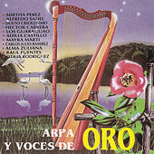 Play & Download Arpa y Voces de Oro by Various Artists | Napster
