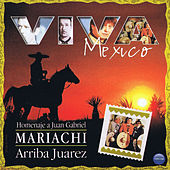 Play & Download Viva Mexico: Homenaje a Juan Gabriel by Mariachi Arriba Juarez | Napster