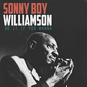 Do It If You Wanna von Sonny Boy Williamson