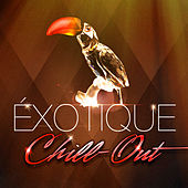 Play & Download Chill-out exotique (50 chansons qui fusionnent chill-out et musiques du monde) by Various Artists | Napster