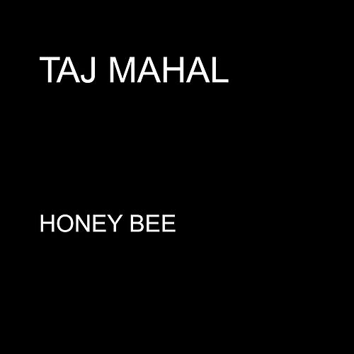 Honey Bee - Single by Taj Mahal
