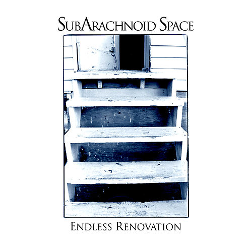 Play & Download Endless Renovation by SubArachnoid Space | Napster