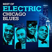 Play & Download Best of Electric Chicago Blues by Various Artists | Napster