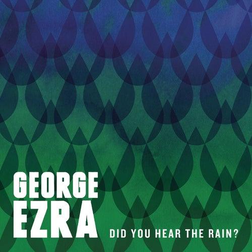 Did You Hear the Rain? by George Ezra