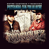 Play & Download Pisteando Con Tololoche by Los Rodriguez de Sinaloa | Napster