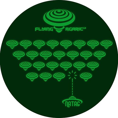 Play & Download Flying Agaric 13 by Natas | Napster