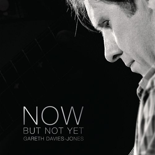 Now But Not Yet by Gareth Davies-Jones