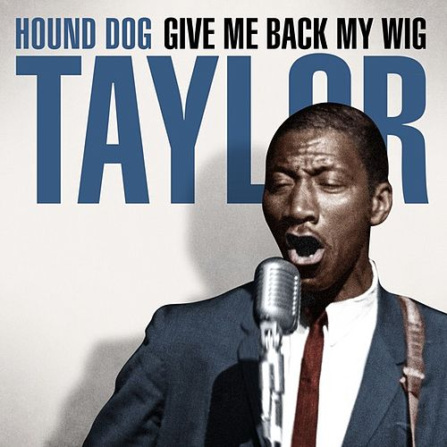 Play & Download Hound Dog Taylor - Give Me Back My Wig by Hound Dog Taylor | Napster