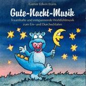 Play & Download Gute-Nacht-Musik :  Harmonische Musik zum Einschlafen für Kinder by Gomer Edwin Evans | Napster