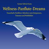 Wellness Panflute Dreams : Melodien zum Träumen und Entspannen by Gomer Edwin Evans