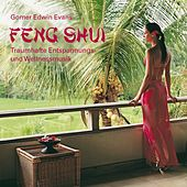 Play & Download Feng Shui: Wohltuende Entspannungsmusik by Gomer Edwin Evans | Napster