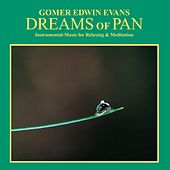 Play & Download Dreams of Pan: Instrumental Music for Relaxation & Meditation by Gomer Edwin Evans | Napster