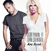 Play & Download Ara Sıcak by Ajda Pekkan | Napster