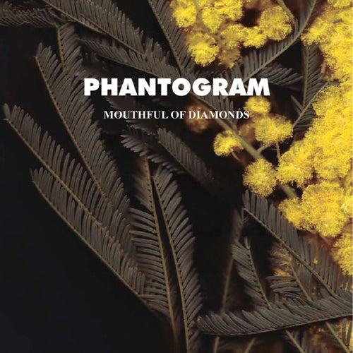 Mouthful Of Diamonds by Phantogram