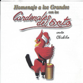 Play & Download Homenaje a Los Grandes by Cardenales del Exito | Napster