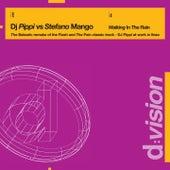 Walking in the Rain/Walking Grooves by DJ Pippi
