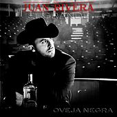 Play & Download Oveja Negra by Juan Rivera | Napster