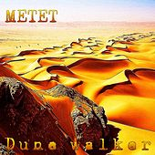 Dune Walker by Metet