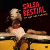 Salsa Bestial by Orquesta el Macabeo